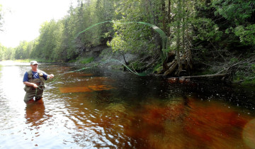 Fly fishing the Whitefish River